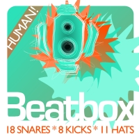 Human Beatbox One-Shots Pack