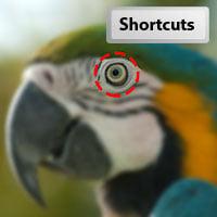 Shortcuts 30 postcard 2 preview1
