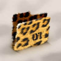 Folder jaguar preview