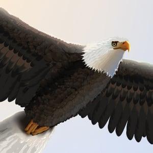 Eagle400