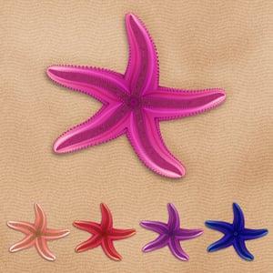 Diana qt starfish retina