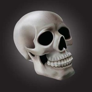 Skull 400x400