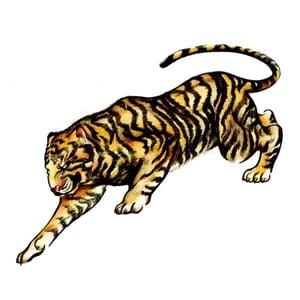 Tiger400
