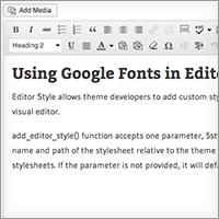 Preview google fonts editor style