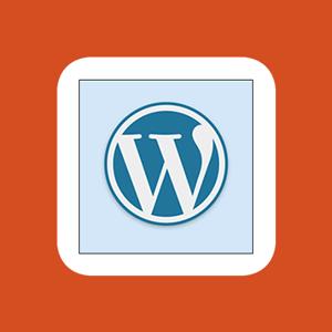 Customize wordpress admin rachel 400