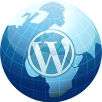 Wordpress global options