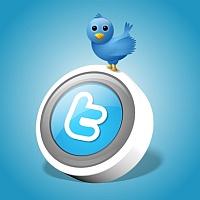 Intro twitter icon