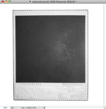 Select with the pen tool the outer area of the polaroid picture