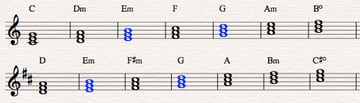 4 C and D chords