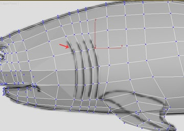 3dsMax_Shark_Modeling_67