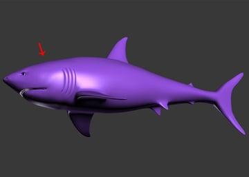 3dsMax_Shark_Modeling_78a