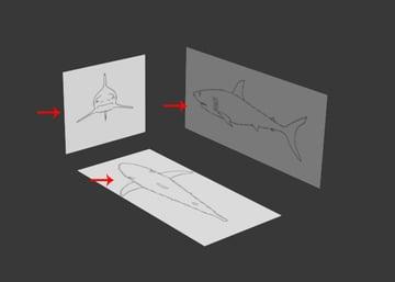 3dsMax_Shark_Modeling_9