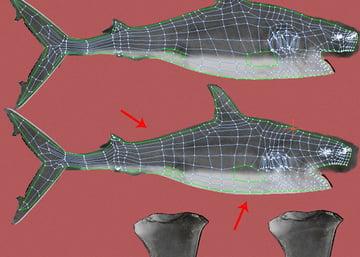 Shark_PT2_49