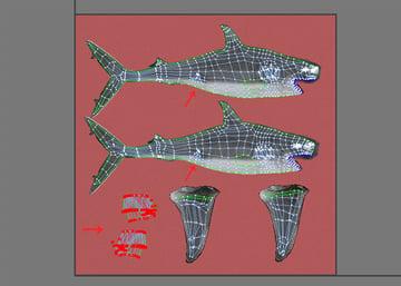 Shark_PT2_56