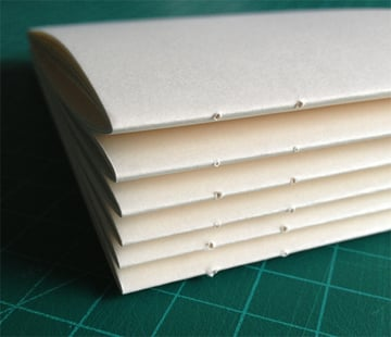 6-punchPaper6