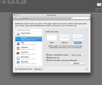 Notifications Preferences Window