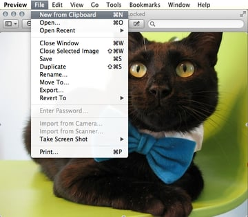 Create a new image from your clipboards contents