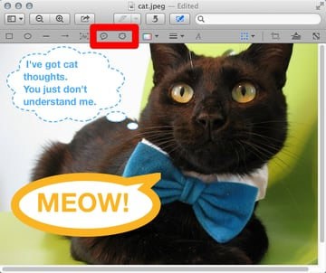 Use Speech and Thought Bubbles as another way to add text