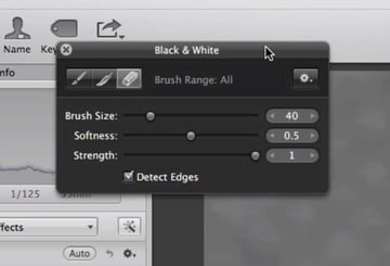 A floating panel provides control over the brush tool.