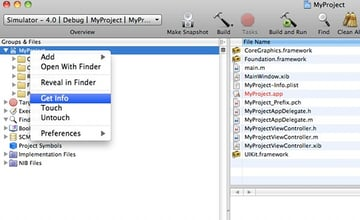 Project Info in Xcode