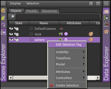 Editing the Selection Tag