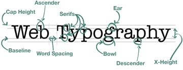 Typography Examined and Labeled