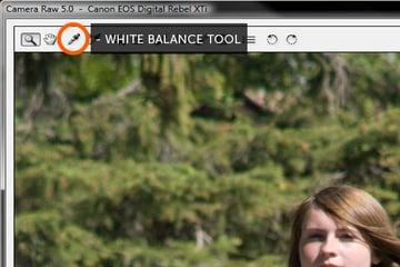 camera raw histogram white balance