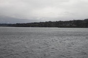 polarizing filter tutorial