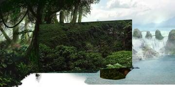 jungle-04 placement
