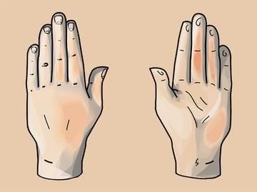 hand_finalimage