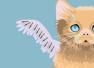 kittenangel13-4_wings1