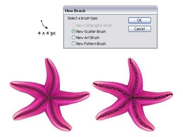 diana-QT-Starfish-22