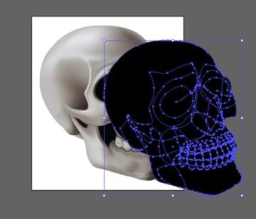 skull_11-3_offset_path