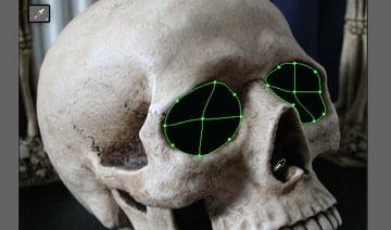 skull_3-5-eyes