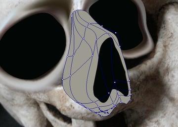 skull_5-3_nose