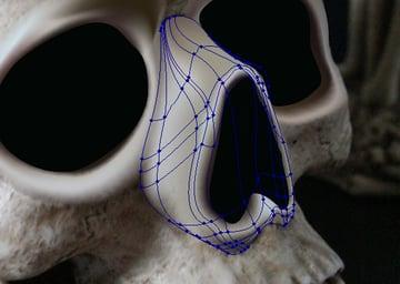 skull_5-4_nose