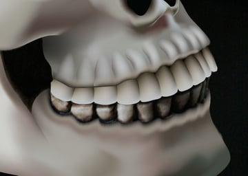 skull_9-3_teeth