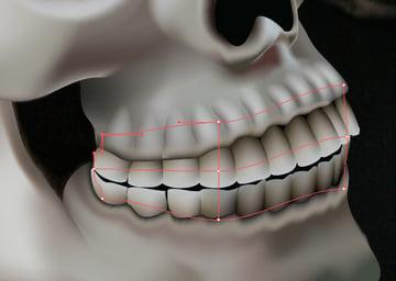 skull_9-6_teeth