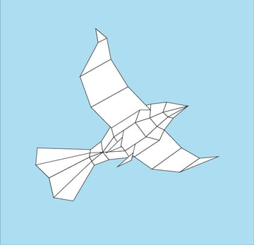 Paper-Bird-09basicdraw