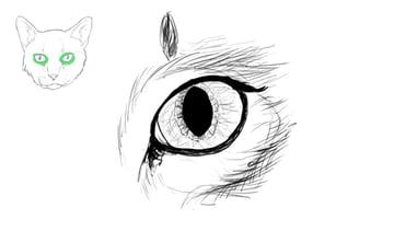 catdrawing_5-5_eyes