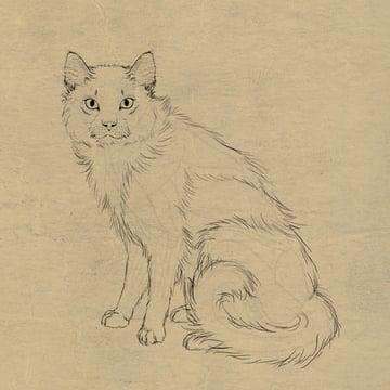 catdrawing_9-2_long_hair