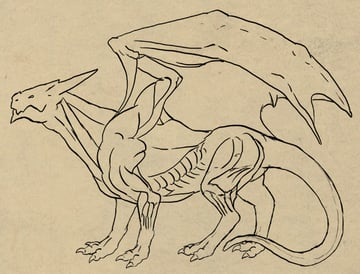 dragonbody_4-4_tail