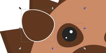 copy eye spot
