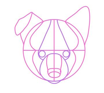 drawingdogs_4-8_puppy_head