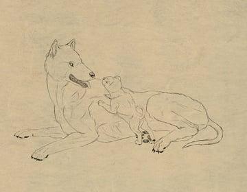 drawingdogs_9-1_fur