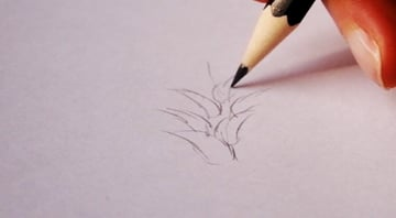 drawingfur_3-3_breaking