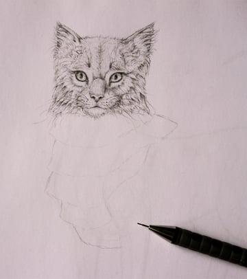 drawingfur_5-1_chest_coats