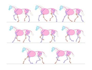 drawinghorse_2-2_trot_frames