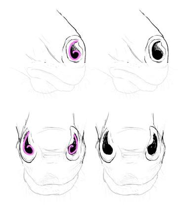 drawinghorse_8-1_nostrils