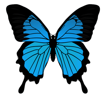 drawingbutterfly_5-5_mountain_blue